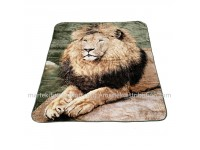 Couverture Lion